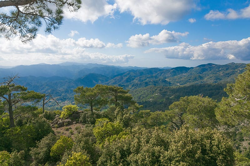 troodos mountains in cyprus
